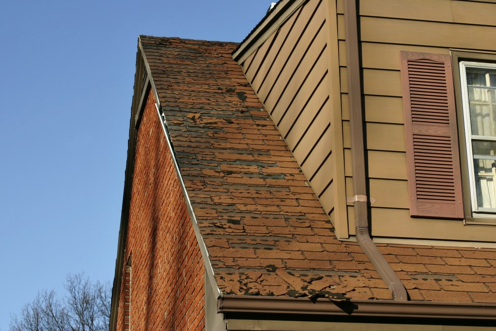 Is It Time To Repair Your Roof? 5 Warning Signs
