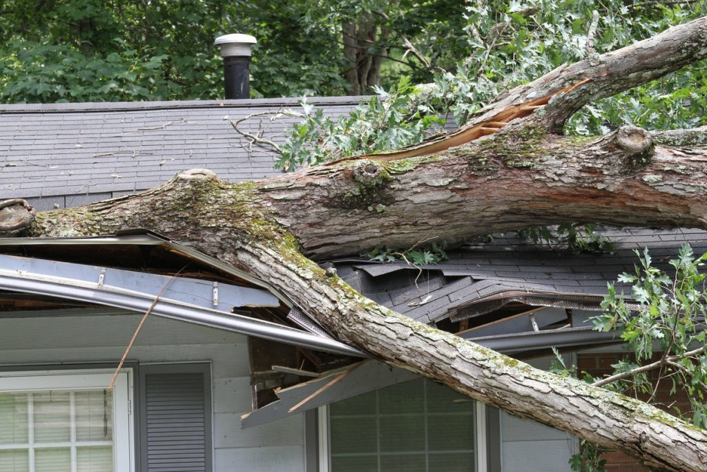 Got Storm Damage Make Sure You Do These 4 Things