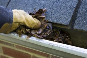 clean clogged gutters Delaware
