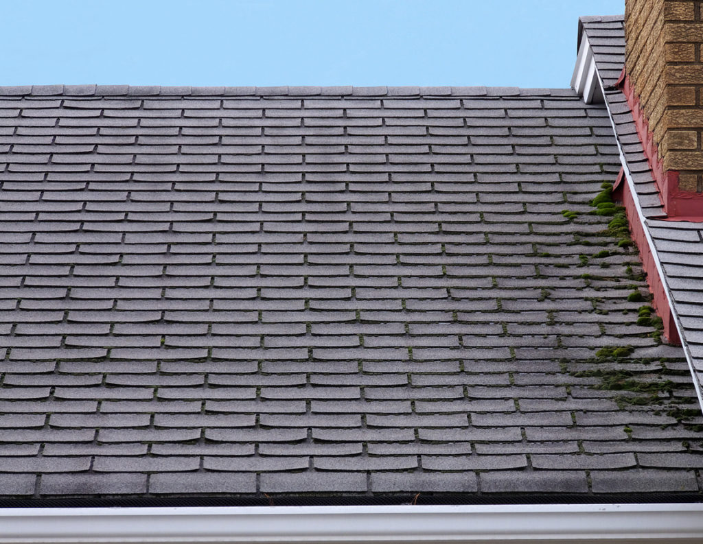 7 Signs Its Time to Replace Your Roof